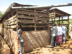Animal Pen with Water Catchment
